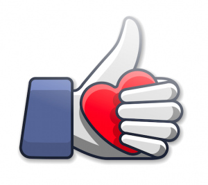 Facebook Likes 2015